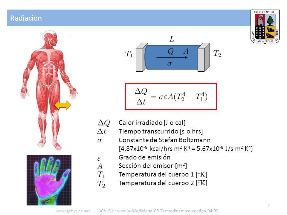 Radiación Calor irradiado [J o cal] Tiempo transcurrido [s o hrs]